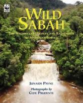 Wildlife in the Bornean rainforest