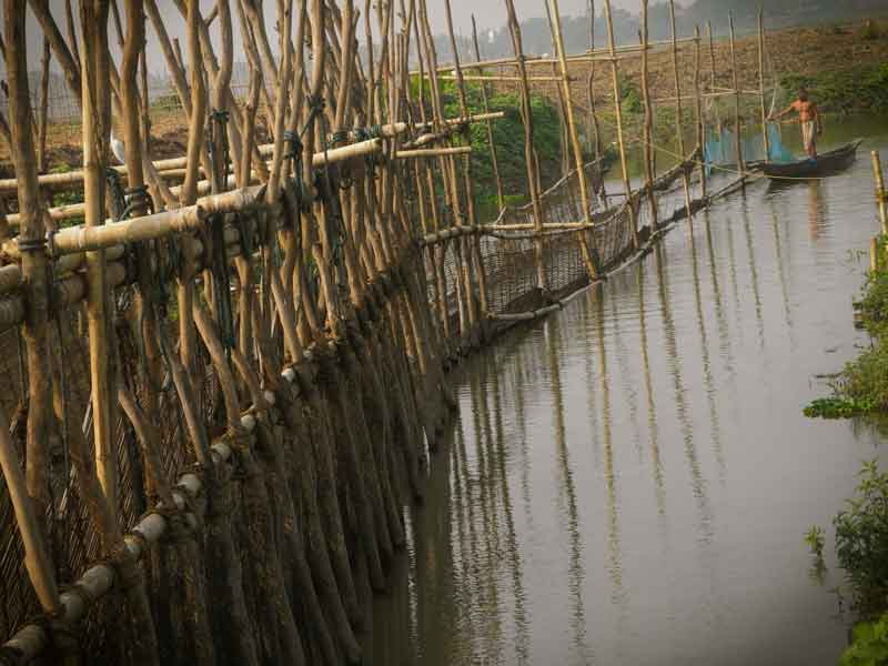 photo essay archives   current conservation posua botah he said the wind is blowing from the west now so we cannot  take you to the beel to show you how we catch fish this wind cleans the  water
