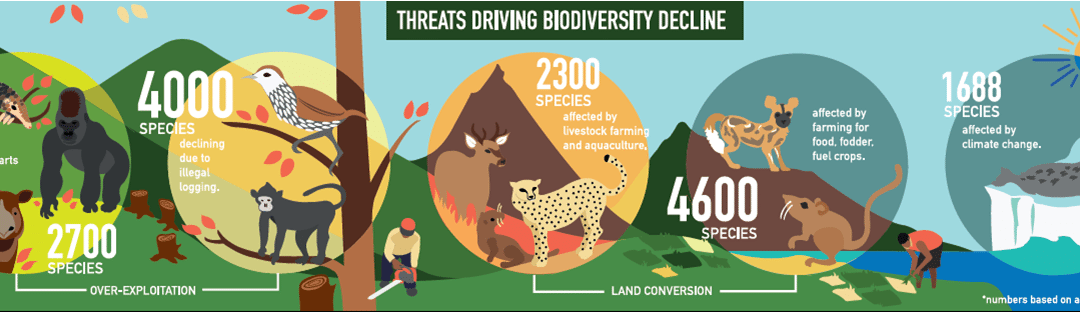 Old threats continue to drive biodiversity decline