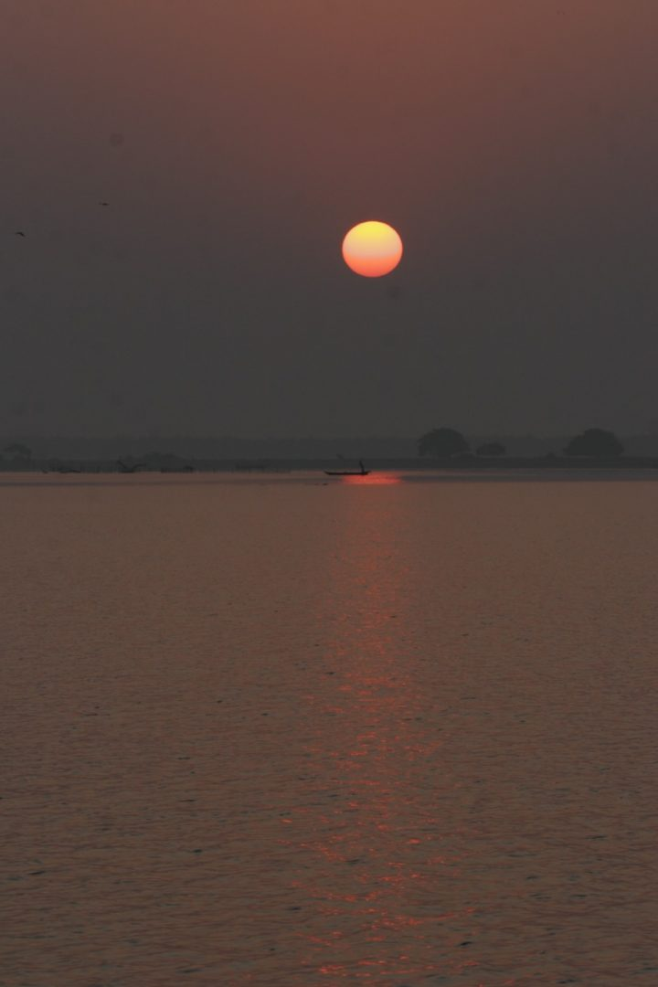 Setting Sun Spotlights Solitary >> Of Chilika Dolphins And People Current Conservation