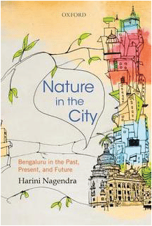 A city through the eyes of nature