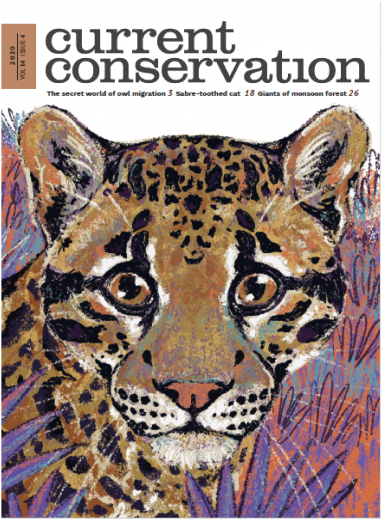 Current Conservation issue 14.4